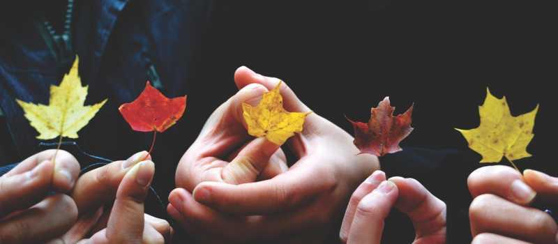 Casas rurales: razones para disfrutarlas en otoño